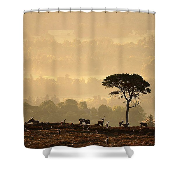 Autumn Morning, Strathglass Shower Curtain