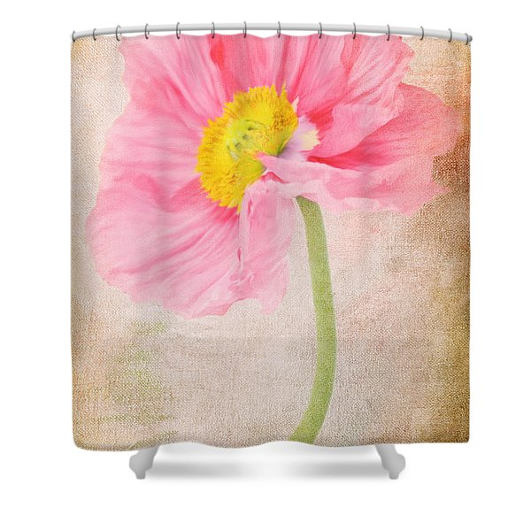 Bella Shower Curtain