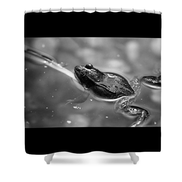 🐸 Froschn. #frog #monochrome #bnw Shower Curtain