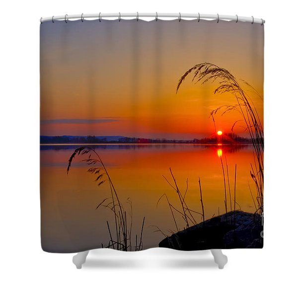 In The Morning At 4.04 Shower Curtain
