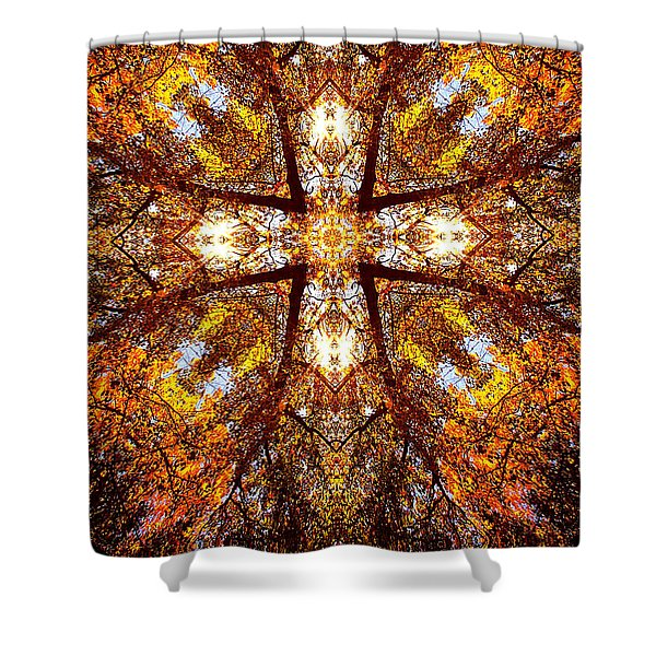 016 Shower Curtain