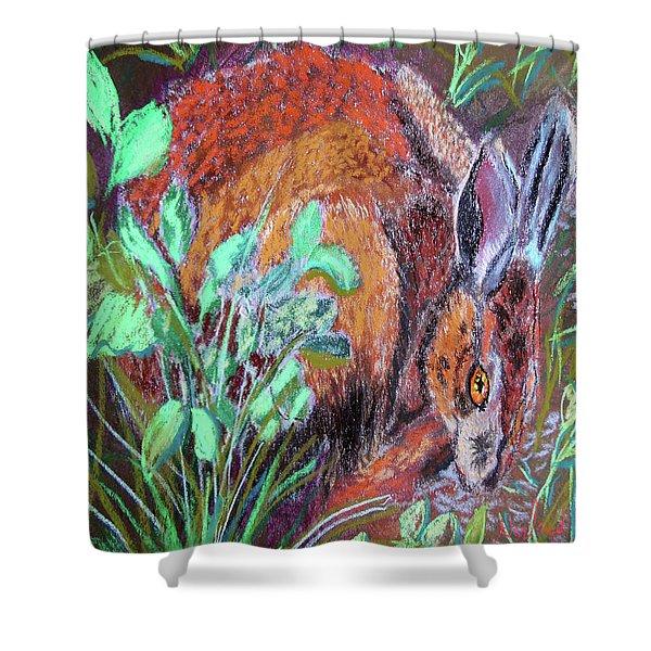 032917louisiana Swamp Rabbit Shower Curtain