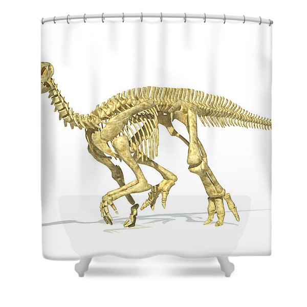 3d Rendering Of An Iguanodon Dinosaur Shower Curtain