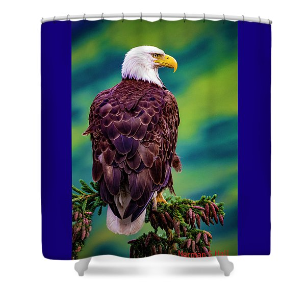 Alaska Bald Eagle Shower Curtain