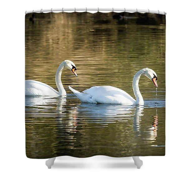 Always Together Wildlife Art By Kaylyn Franks Shower Curtain