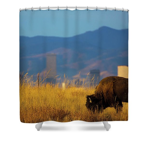 Shower Curtain featuring the photograph American Bison And Denver Skyline by John De Bord