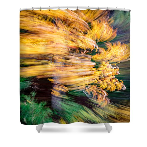 And Back Shower Curtain