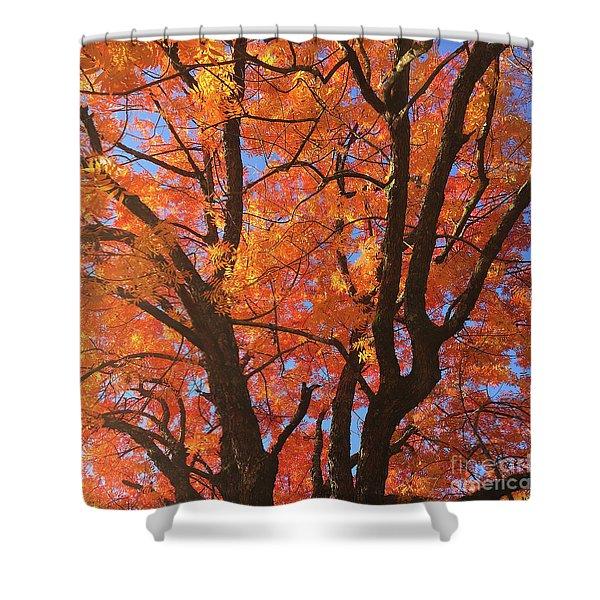 Autumn Orange Shower Curtain