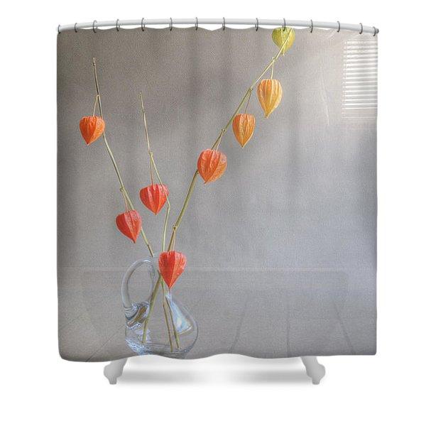 Autumn Still Life Shower Curtain