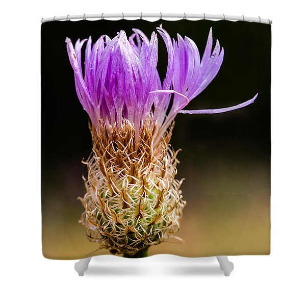 Basket-flower Opening Shower Curtain
