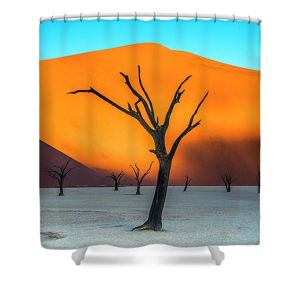 Beauty Lives Forever. Shower Curtain