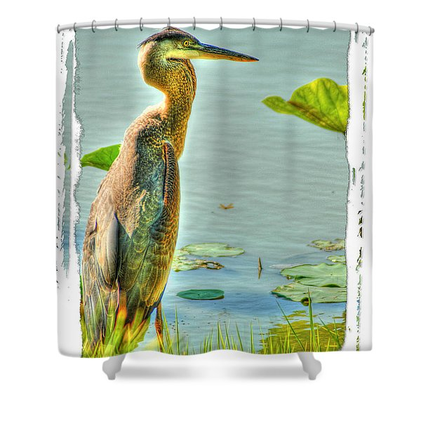 Big Bird Shower Curtain