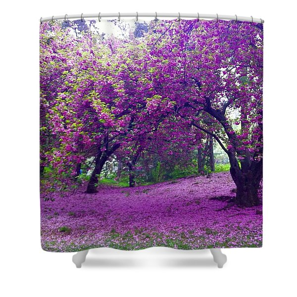 Blossoms In Central Park Shower Curtain