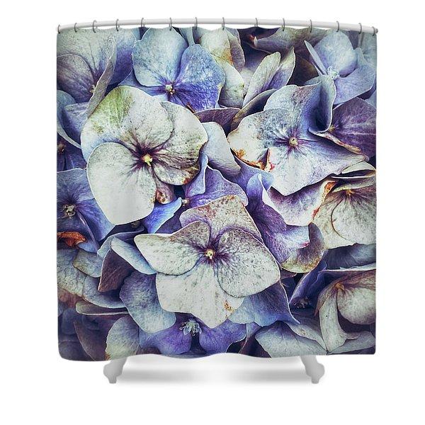 Blue Hydrangeas Background  Shower Curtain