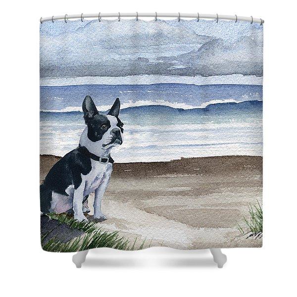 Boston Terrier At The Beach Shower Curtain