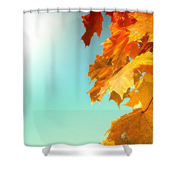 Yellow Autumn White Sun Shower Curtain