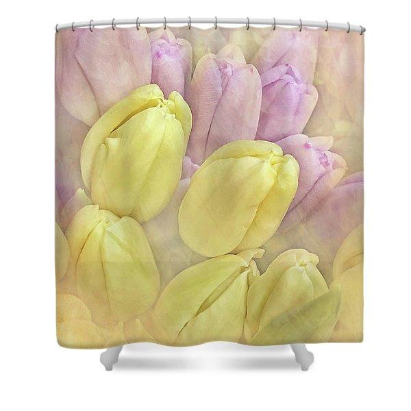 Burst Of Spring Shower Curtain