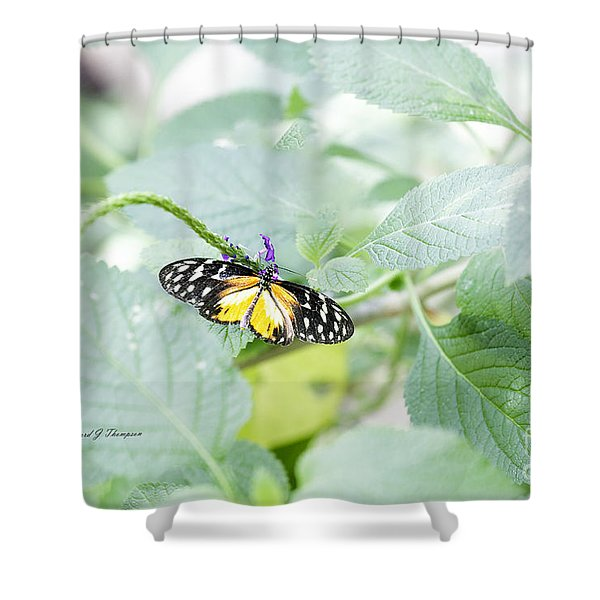 Tiger Butterfly Shower Curtain