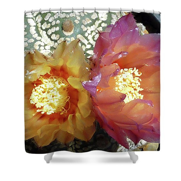 Cactus Flower 3 Shower Curtain