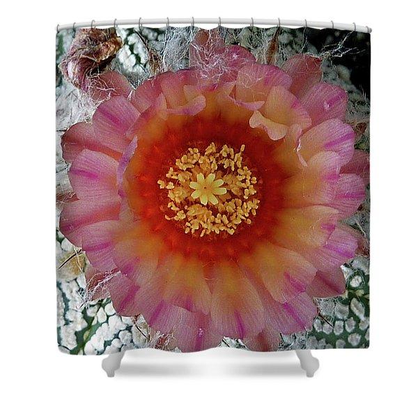 Cactus Flower 5 Shower Curtain