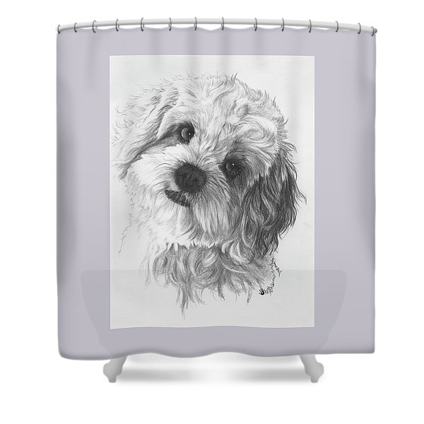 Shower Curtain featuring the drawing Cava-chon by Barbara Keith