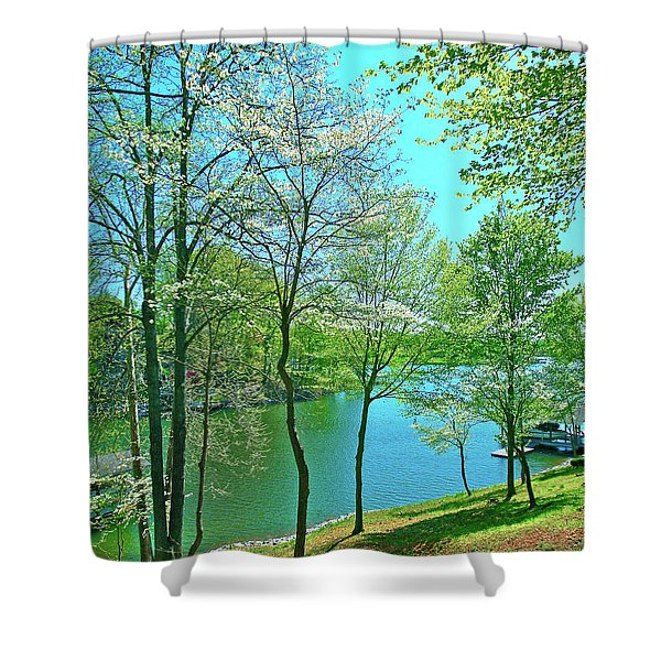 Cluster Of Dowood Trees Shower Curtain