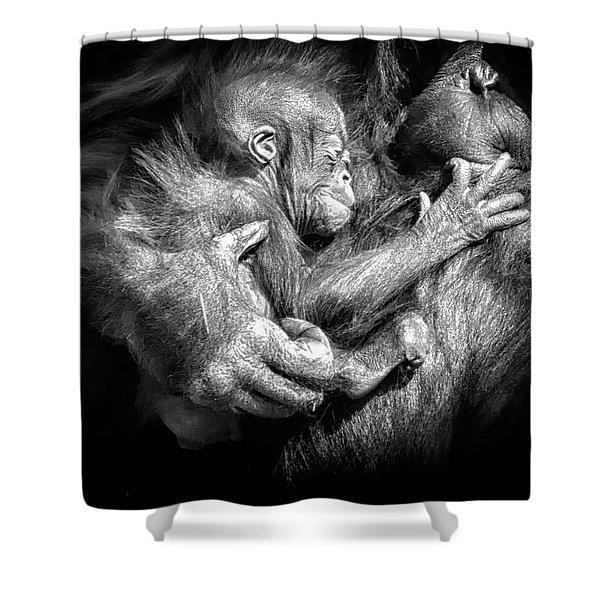 Cradle Shower Curtain
