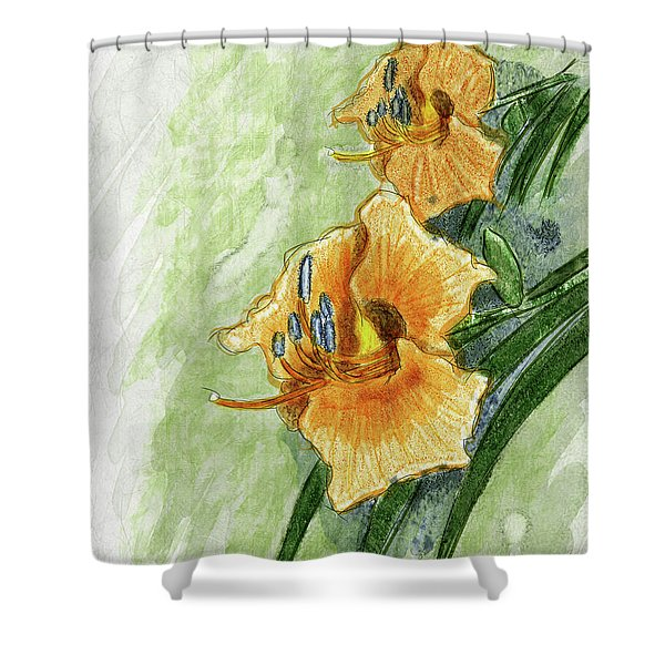 Daylily #2 Shower Curtain