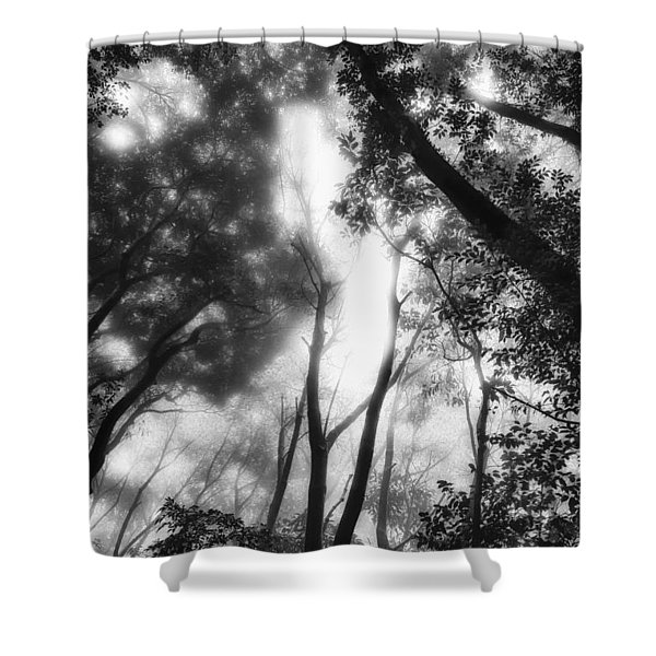 Dejavu Shower Curtain