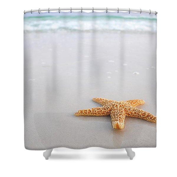 Destin Florida Miramar Beach Starfish Shower Curtain