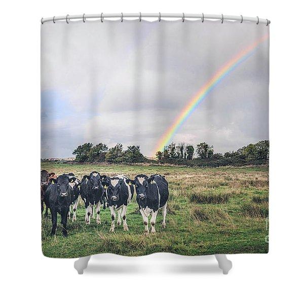 Dreamsville Shower Curtain
