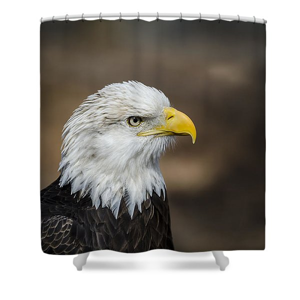 Shower Curtain featuring the photograph Eagle Profile by Andrea Silies
