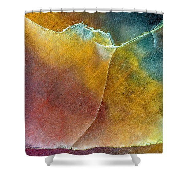 Earth Portrait 001 Shower Curtain