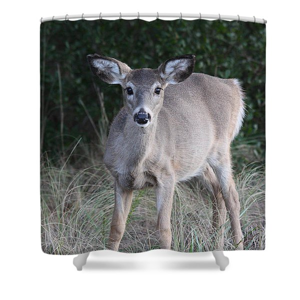 Epitome Of Innocence Shower Curtain