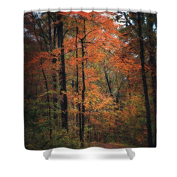 Fall In Arkansas Shower Curtain