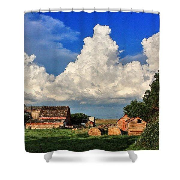 Farm Yard Shower Curtain