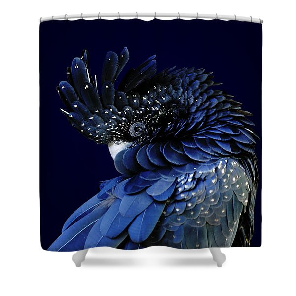 Fibonacci Cockatoo Shower Curtain