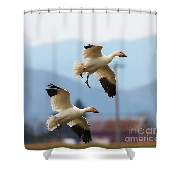 Flaps Down Shower Curtain