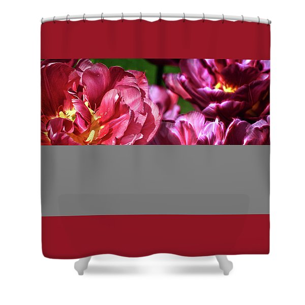 Flowers And Fractals Shower Curtain