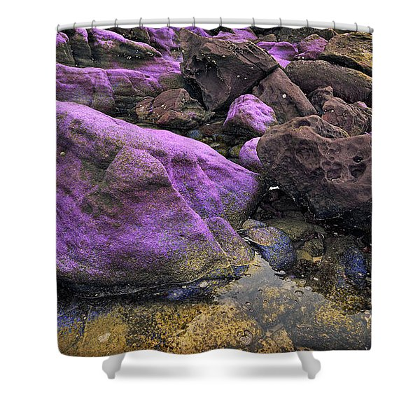 Foreign Shore Shower Curtain