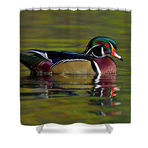 Get Ready Shower Curtain
