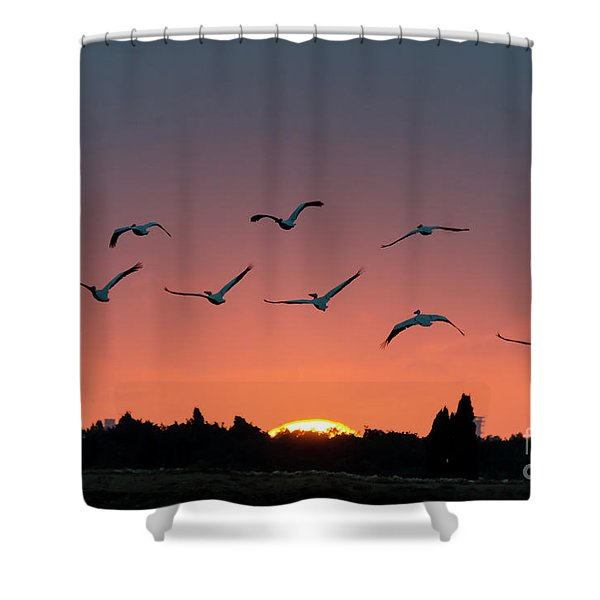 Go West Shower Curtain