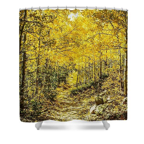 Golden Aspens In Colorado Mountains Shower Curtain