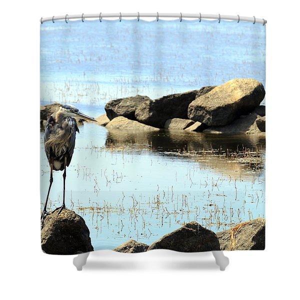 Heron On The Rocks Shower Curtain