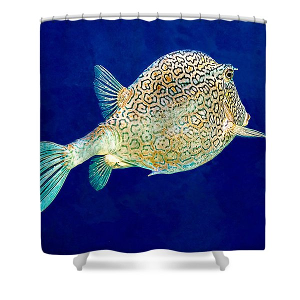 Honeycomb Cowfish Shower Curtain