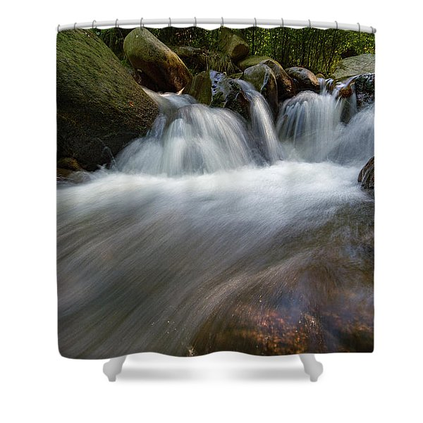 Ilse, Harz Shower Curtain