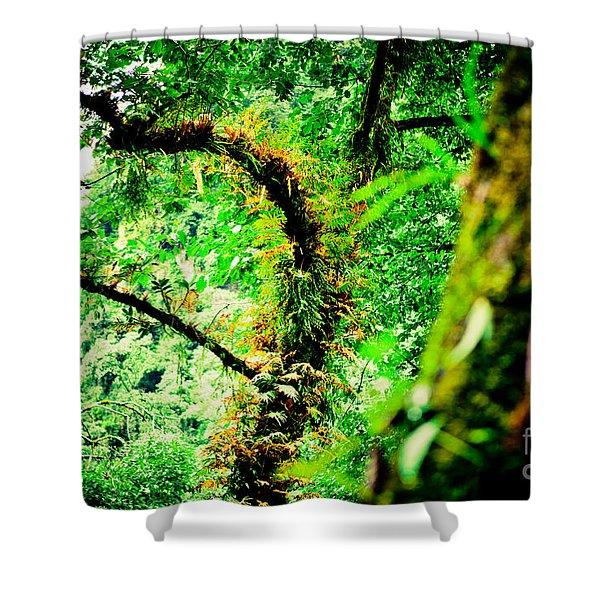 Jungle Annapurna Yatra Himalayas Mountain Nepal Shower Curtain