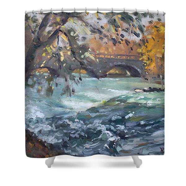 Late Afternoon By Niagara River Shower Curtain