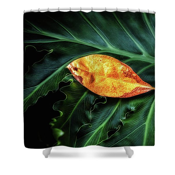 Life Cycle Still Life Shower Curtain