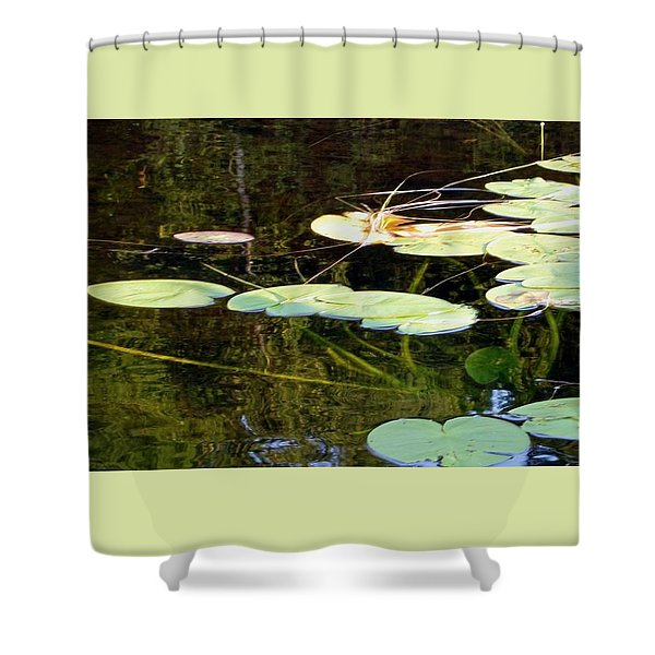 Lily Pads On The Lake Shower Curtain